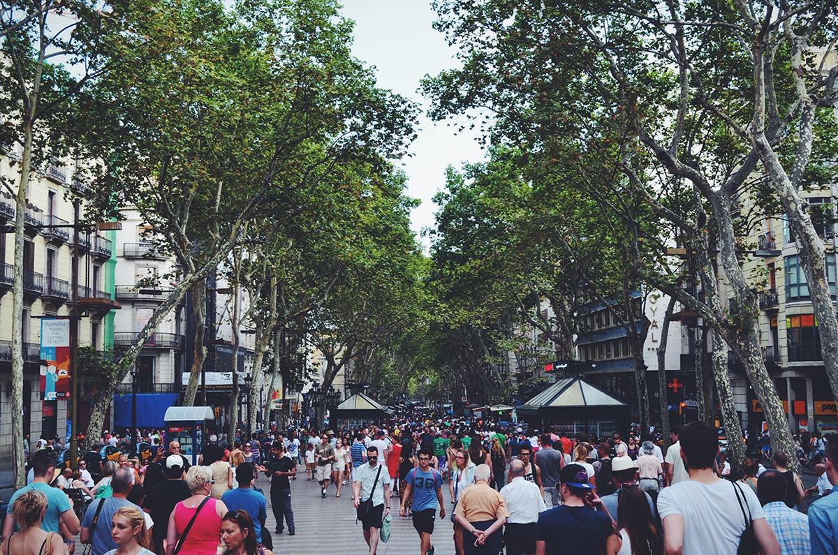 Les Français et la rentrée économique et sociale 2019 image