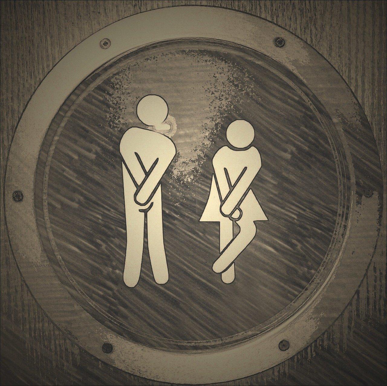 Etude sur l'enjeu des toilettes à l'école image